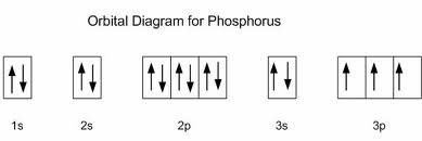 general information phosphorus : phosphorus orbital diagram - findchart.co